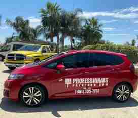 Protected: Professionals Painting