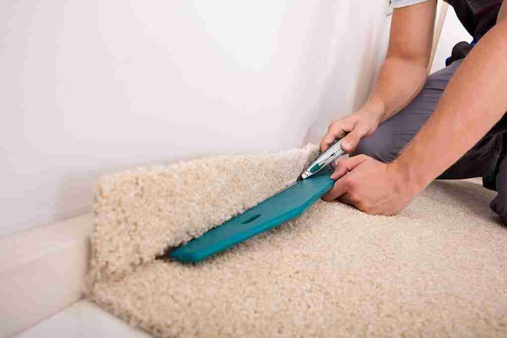Carpet-cleaning-rental